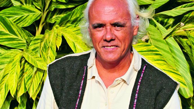 Experiencia con la Planta Maestra Ayahuasca