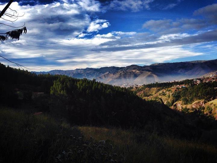 En Medio del Ritual de la Planta Sagrada Ayahuasca