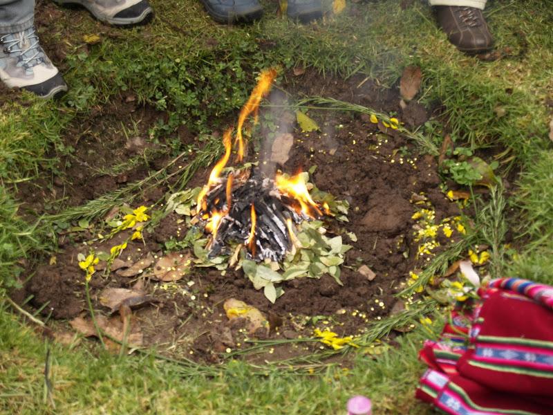 Tratamiento y Dieta con Ayahuasca en Cusco