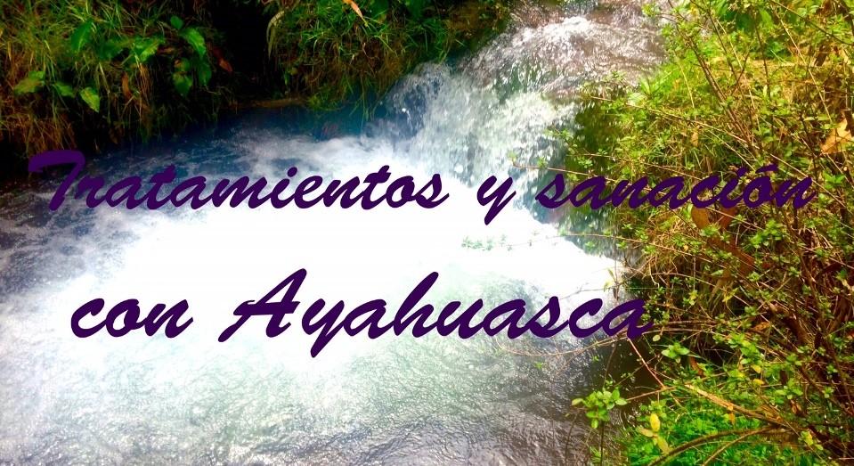 Procedimientos de los tratamientos con Ayahuasca