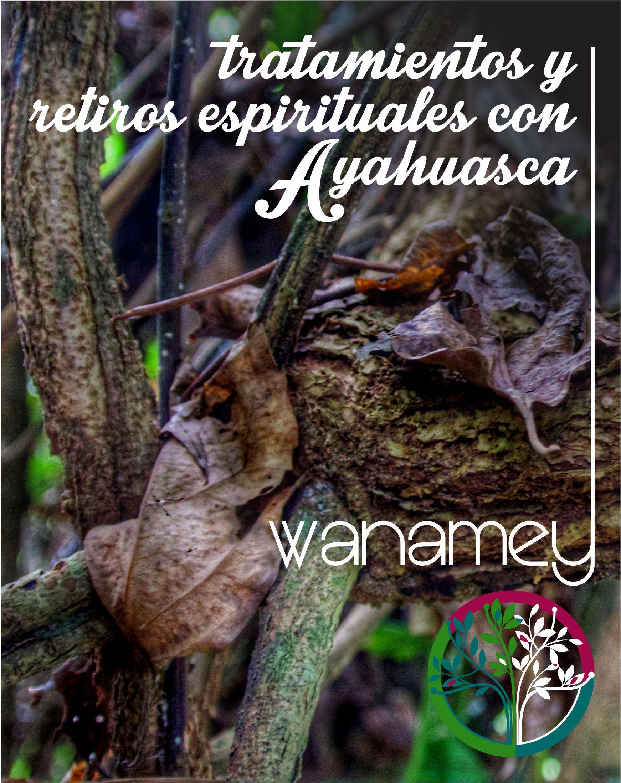 Tratamientos y Retiros Espirituales con Ayahuasca