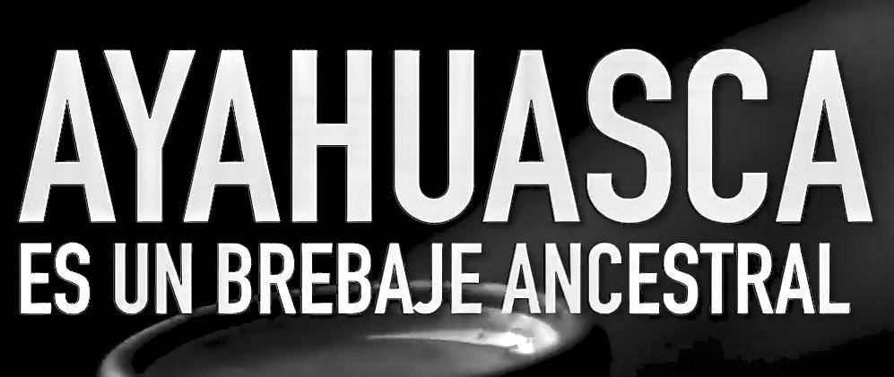 Ayahuasca: Testimonios y Preguntas