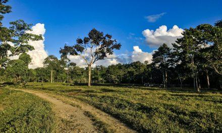 Cosmovisión de los Pueblos Amazónicos de Perú
