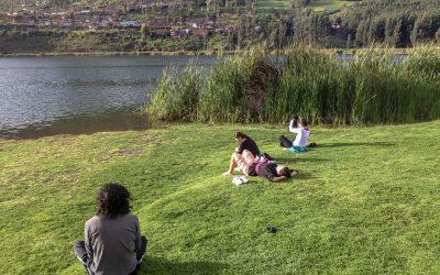 Ayahuasca: el sendero de la planta sagrada