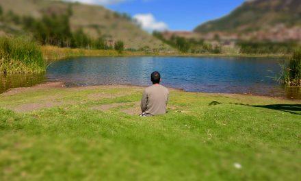 Ayahuasca: debemos ayunar y meditar
