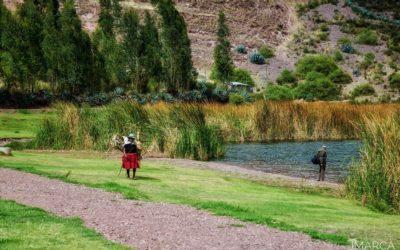 Paz y reflexión con la Madre Ayahuasca